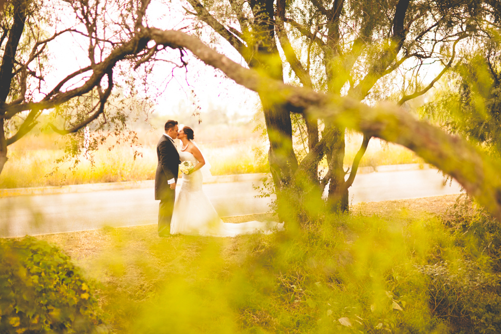 boda-aguascalientes-sharis-rene-odin-castillo-wedding-photos 3